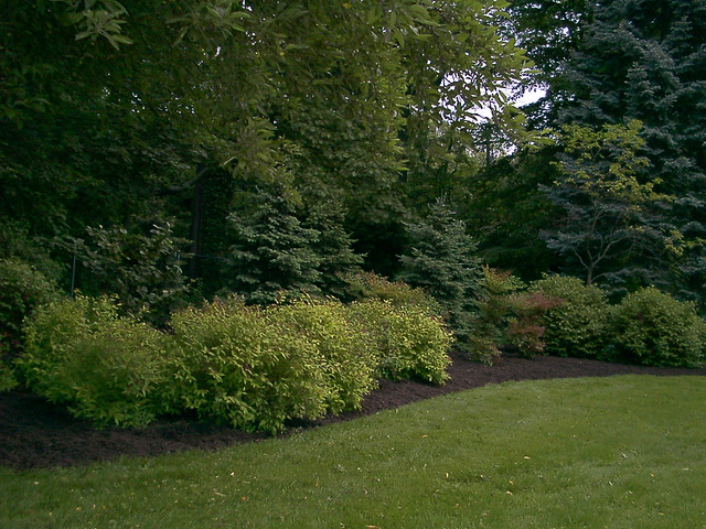 Landscaping Property Lines Pictures : Photo