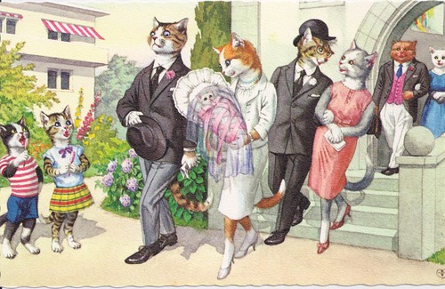 Mainzer Cat Postcard