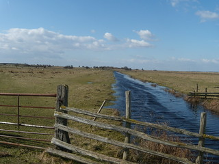 Watercourse