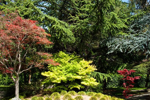 Japanese friendship garden flickr photo sharing for Japanese friendship garden