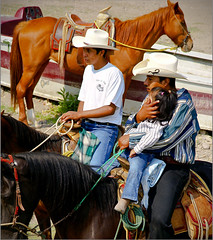 animal sports, western riding, equestrian sport, sports, pack animal, horse, horse trainer, horse harness, cowboy, traditional sport,