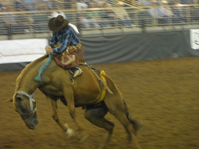 Kissimmee RODEO Show 24 - 7/10
