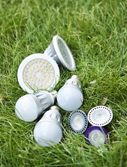 ball(0.0), golf equipment(0.0), ball(0.0), grass(1.0),