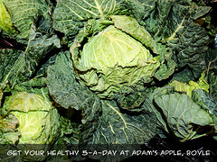 Cabbage at Adam's Apple