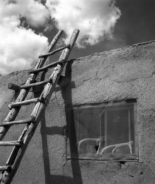 Ladder, Taos Pueblo, Taos New Mexico
