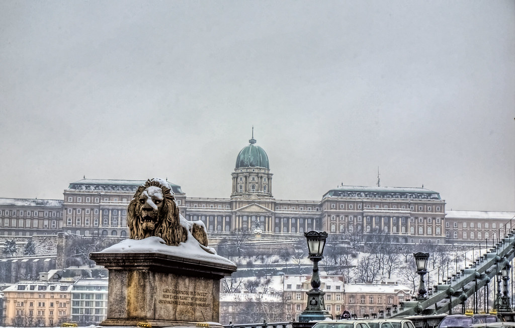 The Lion, the Castle & the Chain Bridge Budapest