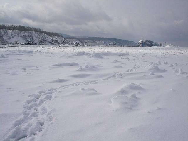 流氷のプールに入る・浮かぶ(知床) Drift Ice Walk(Shiretoko)