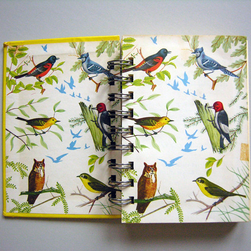 Vintage Book Journal 'Yellow Book of Birds of America'
