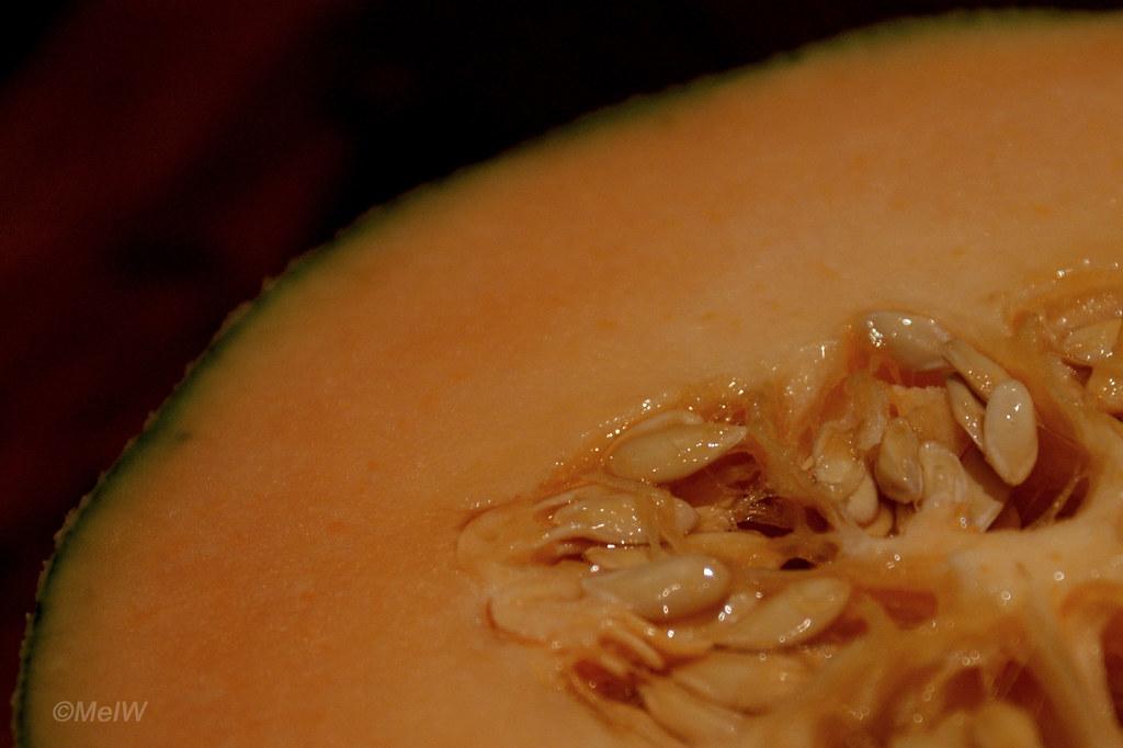 124/365: Cantaloupe Melon