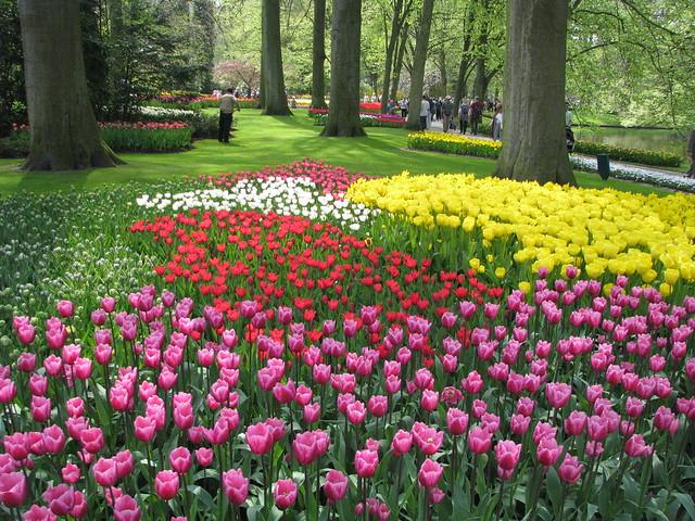 Keukenhof Gardens (10)