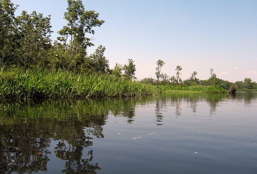 water boat kayak southcarolina paddling tailracecanal lakemoultrie pinopolislocks wadboocreek