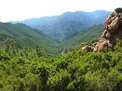 Sente de Capeddu : le vallon depuis le col de Capeddu