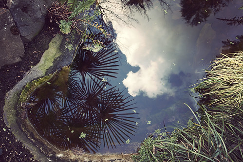 sky reflection water clouds portland pond pdx spacescompulsion compulsionhome