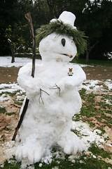 Orsetto e lo studio del dimorfismo sessuale in pupazzi di neve