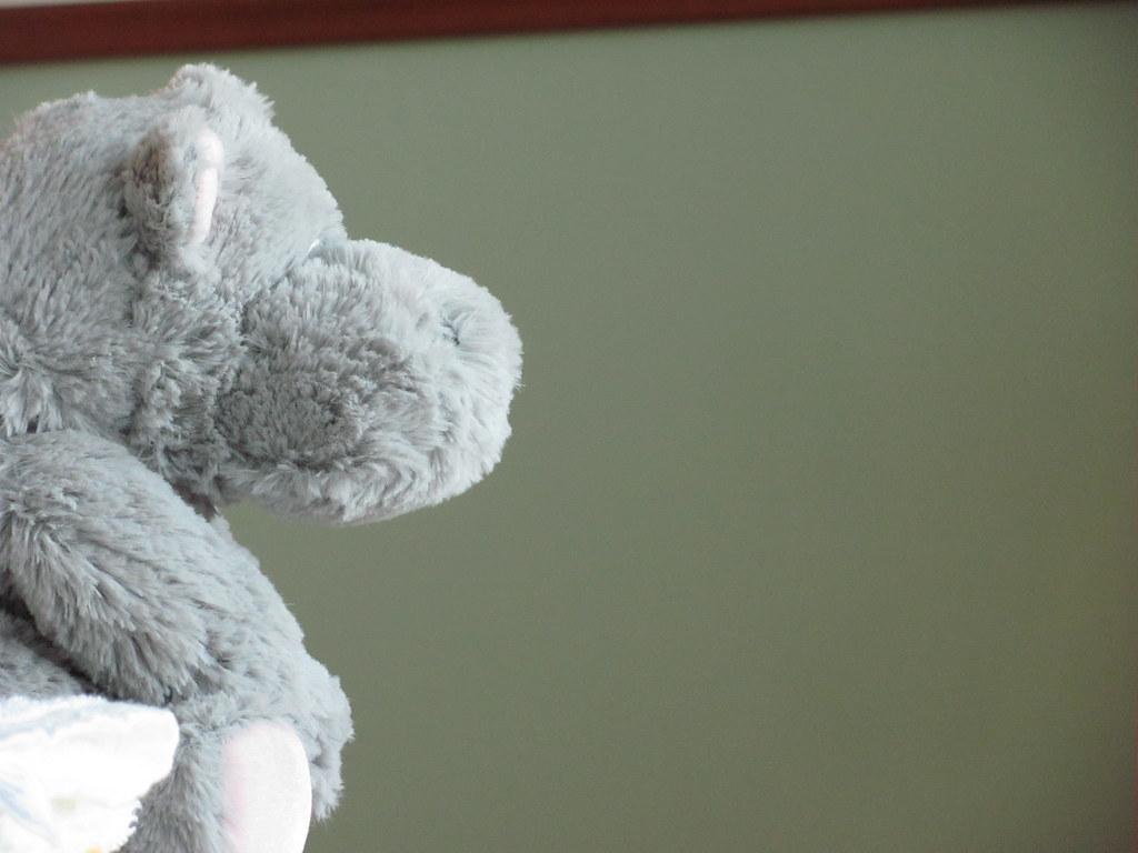 Mr Hippo   Lulu Evans   Flickr