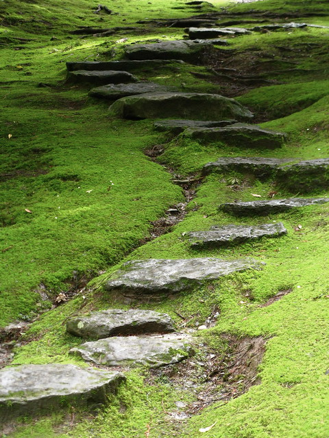 Stepping stone path flickr photo sharing for Stone stepping stones for garden paths