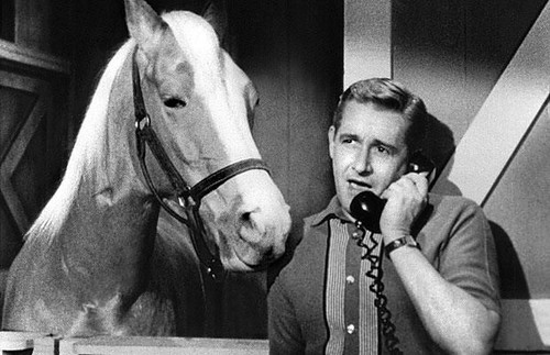 songs a horse is a horse mr ed tv show.