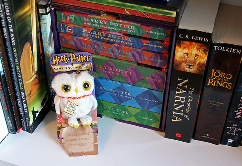 Harry Potter Books & Hedwig