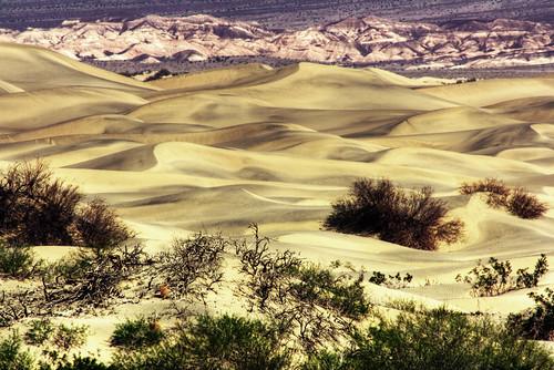 california dunes deathvalley sanddunes mesquitesanddunes