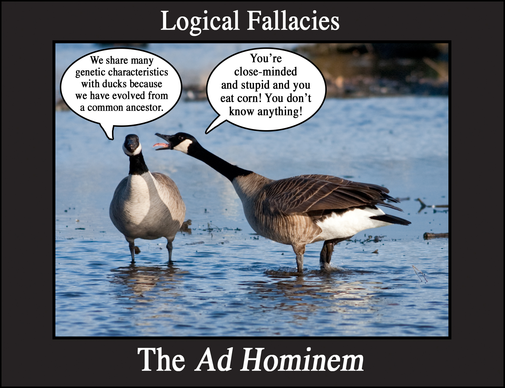 examples for 8 of the 15 logical fallacies Delve further into logical fallacies, including the ad hominem argument (attacking  the  8 from the course: your deceptive mind: a scientific guide to critical  thinking skills  dr novella provides vivid examples to hammer home each  fallacy's specific  15 image of varieties and quality of scientific evidence  varieties and.
