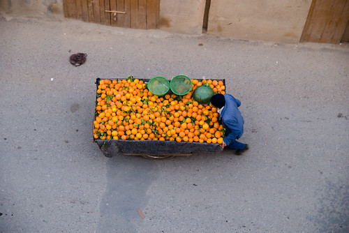 oranges for sale