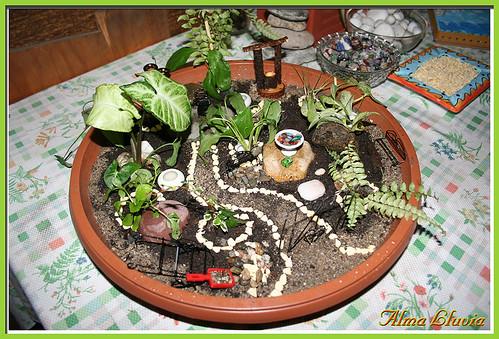 Mini jard n a photo on flickriver for Jardin japonais miniature exterieur