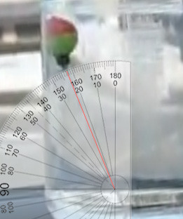 Bobber accelerometer