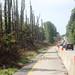 I-64 widening - June 30, 2017