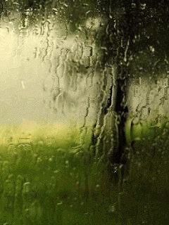 rain_animated2