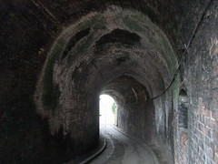 Horse tunnel