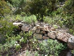 Montée au col 750 m : les restes erratiques du sentier traditionnel