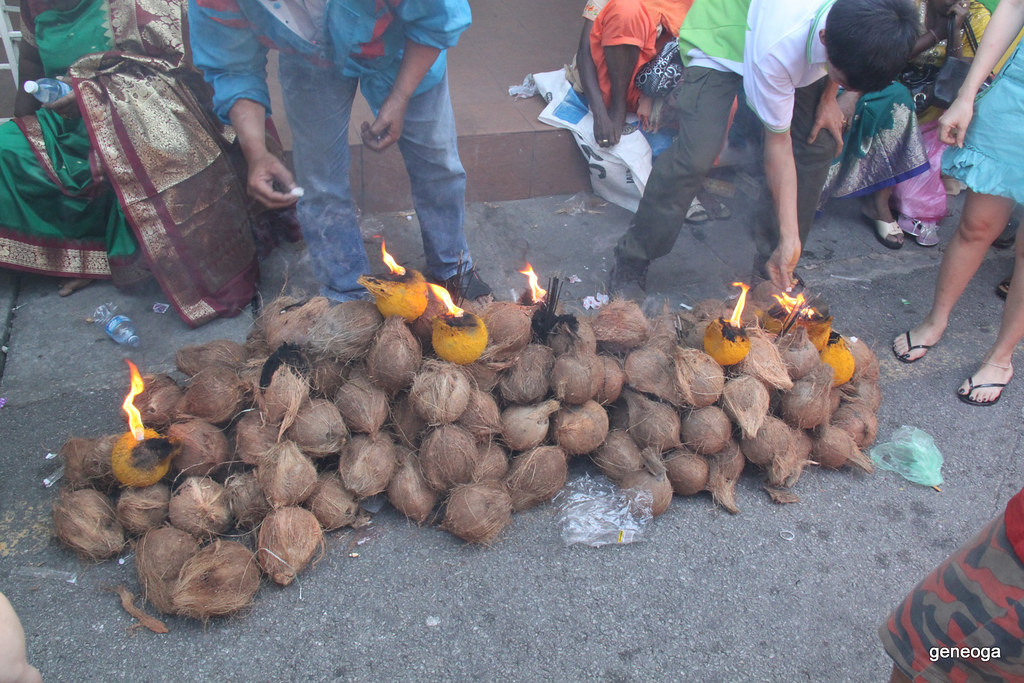 Coconuts ready to be smashed