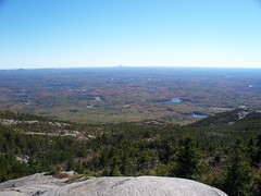 View From the Almost Top