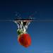 strawberry splash by baummarco
