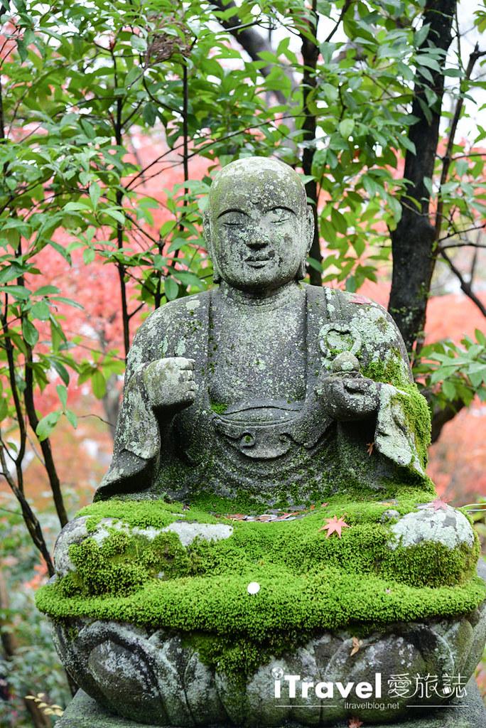 京都赏枫景点 永观堂 (37)