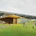 Fort York Visitor Centre scheme B