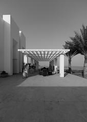 Qal'at Al-Bahrain Site Museum (XVI)