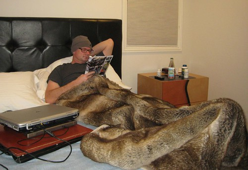 fur throw, relaxing, laptop, car and driver… IMG_1907