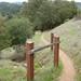 Foothills-2010-01-16