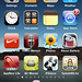 iPad mini *(iPod touch with a few tweaks)