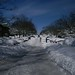 100206_SnowStorm_46
