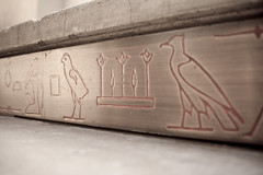Library Steps (Ancient Egyptian Hieroglyphs)