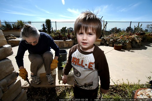 gardening with grandma   pulling weeds