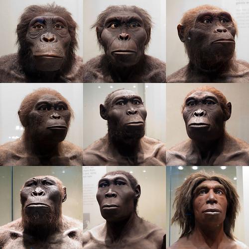 Hubo muchos humanos antes que nosotros.