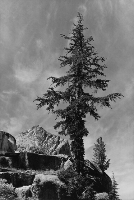 ansel adams the mural project 1941 1942 flickr photo