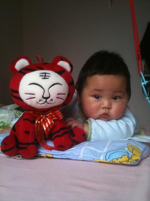 大老虎,小老虎 | flickr – 相片分享!