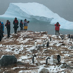 People and Penguins - Antarctica