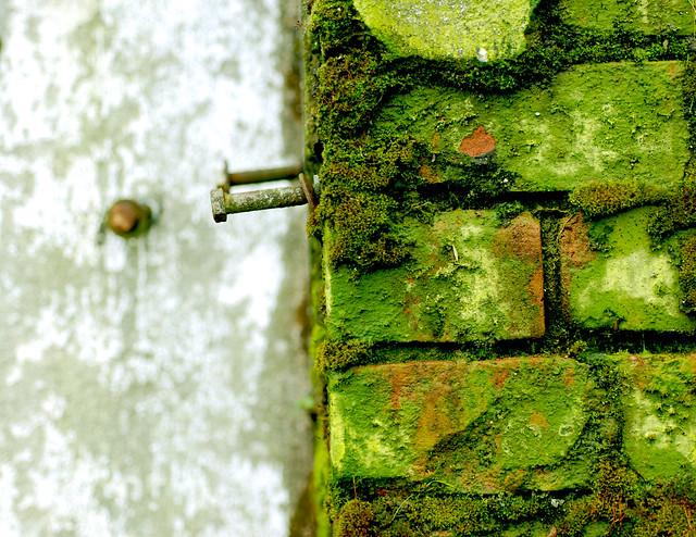 Green Manalishi | Flickr - Photo Sharing!