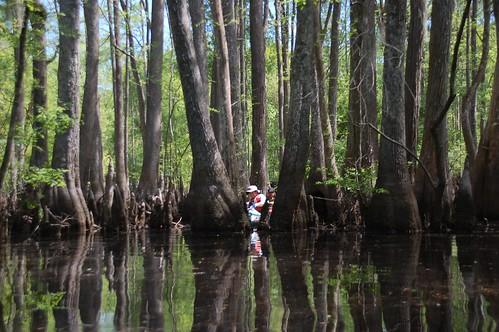 sc unitedstates southcarolina kayaking paddling edisto smoaks lowcountryunfiltered