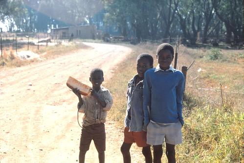 Kids, Zimbabwe